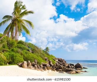 On a Sunny Beach Divine Shoreline