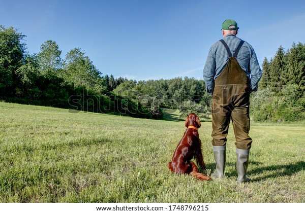 On a sunny day in May, a Farmer stands with his Irish Setter hunting dog on the mowed meadow and both look down into the beautiful, idyllic little valley.