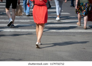 On a sunny day, pedestrians cross the street through a pedestrian crossing. There are pedestrian shadows on the street. View from the back.