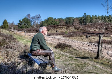 On a sunny spring day, a lonely hiker sits on a wooden bench in the Lüneburg Heath and enjoys the peace and quiet that prevails in the heath at this season.