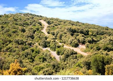 on top of the mountain in Veli Losinj, island Losinj, Croatia