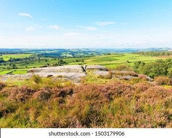 On trop of Birchen Edge, out over the heather and gritstone to the open spaces of the Derbyshire Countryside.