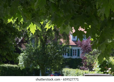 on a very sunny day in june in south germany you see countryside houses and facades with trees and plants around small villages and places
