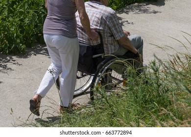 on a very sunny day in june in south germany you see single lady pushing rollator on a walk in green park