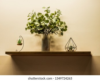 On the wall shelf there are three glass objects with green plants - Shutterstock ID 1349724263