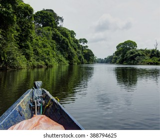 On the way to Bagyeli pygmy village in Cameroon