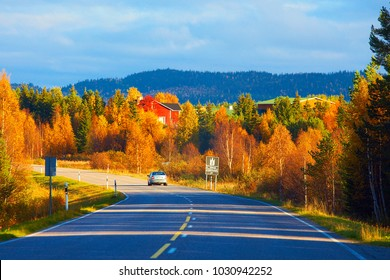 On the way to Lapland in autumn, northern Finland.