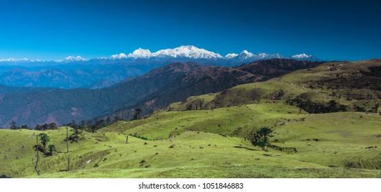 On the way to Phalut, Singalila National Park, Himalaya,  India Nepal Border