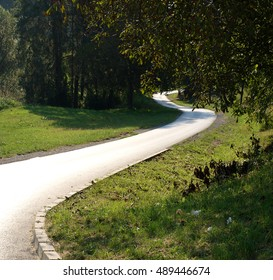 On the way / The picture is of a narrow road, through the trees, in Serbia.