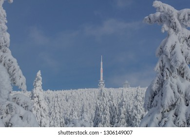 on the way in the winter landscape through the beautiful harz - Shutterstock ID 1306149007