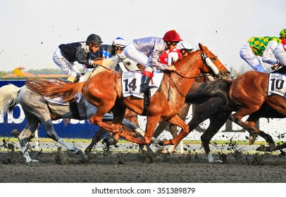 One of 9 horse races that passed during Dubai World Cup day in Meydan Racecourse on Saturday, 29th March 2014. Dubai, United Arab Emirates.