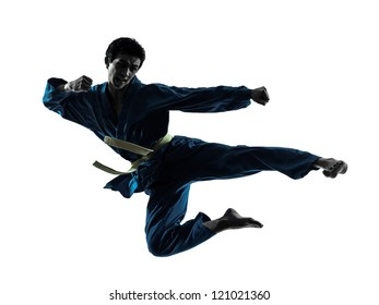one asian man exercising karate vietvodao martial arts in silhouette studio isolated on white background