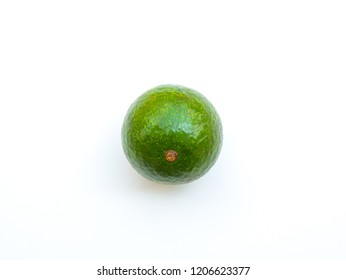 One avocado on white background, Avocado from farm in Thailand country