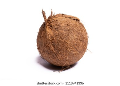 One big brown whole coconut close up copy space isolated on white background