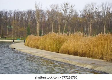 One of the biggest lake's in Chisinau, Valea Morilor