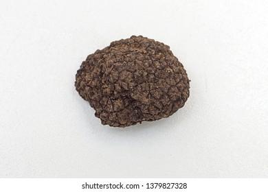 One Black Truffle Edible Mushroom Food