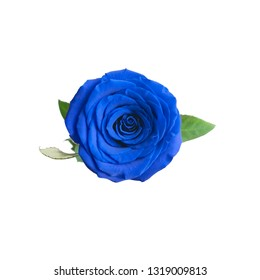 One blue rose on a white isolated background