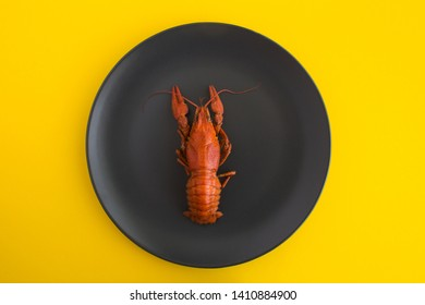 One boiled crayfish on a black plate on the yellow background.Top view.