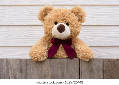One brown cute teddy bear standing behind the old wooden fence with yellow wood background.