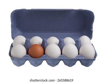 One brown egg among white eggs