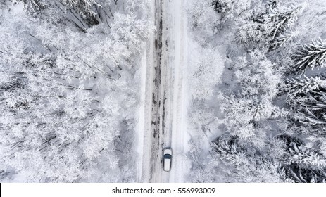 One car driving through the winter forest on country road. Top view from drone