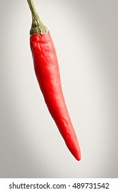 One chili pepper on a light textured background