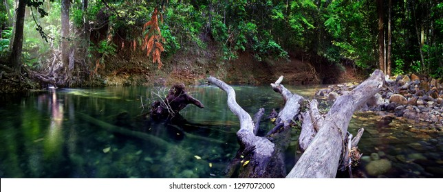 One of the cleanest water in the world flows under morning sunbeams and tree crowns through the oldest tropical rainforest.Emmagen Creek,Daintree National Park,Far North Queensland, Australia.-Image.