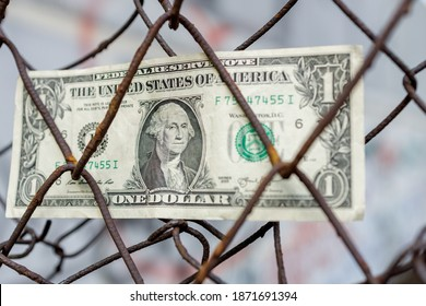 one dollar stuck in an iron mesh fence. got into trouble, arrested dollar