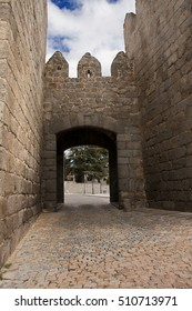 One of the doors in the defensive walls of the medieval city of avila, in Spain