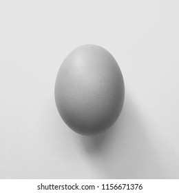 One egg coler  black  on the white  background