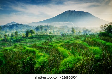 One fine morning of Mount Agung Bali.