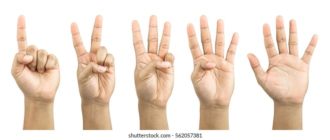 One to five fingers count signs isolated on white background