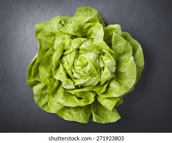 One fresh head of lettuce, isolated on a dark gray slate stone background.