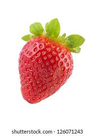 One Fresh Strawberry Isolated on White Background
