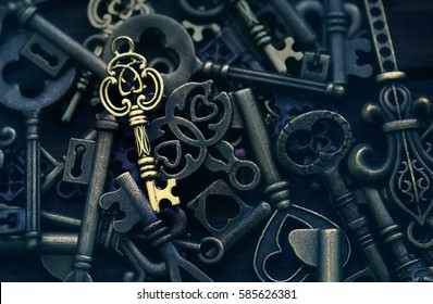 one golden key on a background of different vintage keys, the right solution concept image