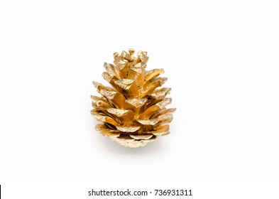 one golden pine cone on a white background