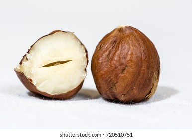 One and Half Hazelnut Close Up