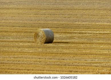 one hay bal