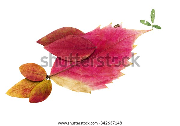 One Isolated Children Hand Made Red Stock Photo (Edit Now