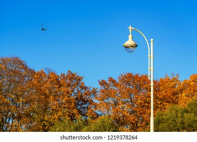 one lamp on a column in the park against the background of the blue sky and autumn trees