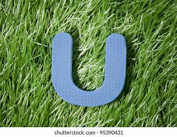 One letter of foam on green grass field
