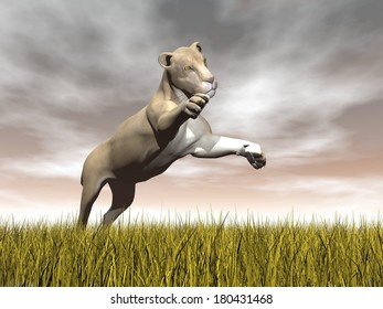 One lioness jumping while focusing on something upon yellow grass by cloudy brown day