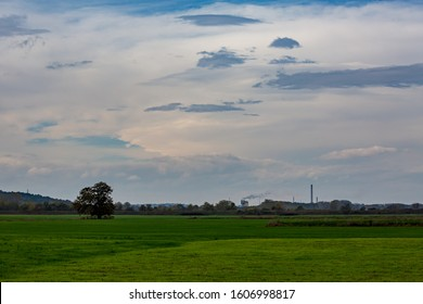One lonely walnut tree in the middle of green field and smoking chemical factory chimney in the background, cloudy late autumn day. Photo from near Zlato Pole village, Dimitrovgrad, Haskovo, Bulgaria - Shutterstock ID 1606998817
