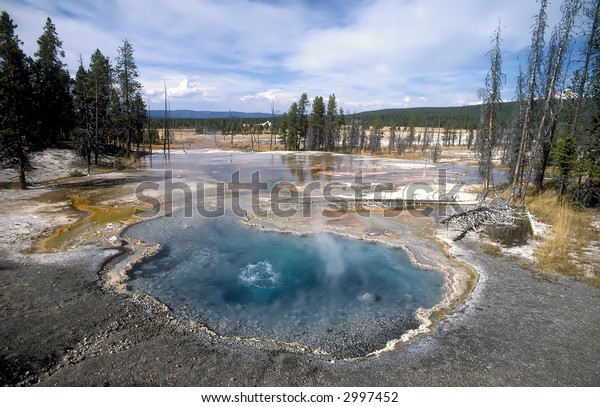 One of the many geysers at Yellowstone National Park.