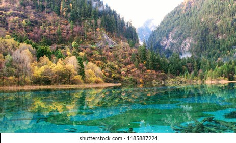 One of Jiuzhaigou's many lakes reflecting the colourful fall foliage on a calm afternoon in Jiuzhaigou Valley National Park of Sichuan, China.  The turquoise blue lake is a signature of Jiuzhaigou.