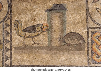 One of the most famous mosaic portraits of the Basilica of Aquileia: the fight between the light (the cock) and the dark (the turtle)