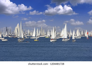 One oft Biggest sail boat regata in the world, Barcolana, Trieste regatta