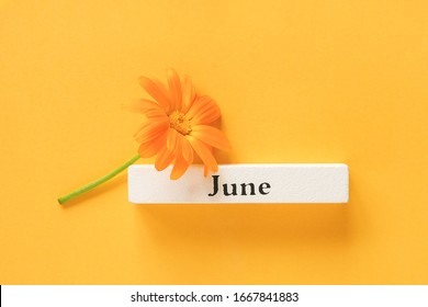 One orange calendula flower and calendar summer month June on yellow background. Top view Copy space Flat lay Minimal style. Concept Hello June Template for your design, greeting card.