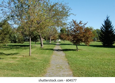 One path in the park