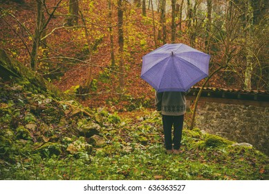 One person with an umbrella alone in the autumn forest
